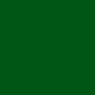 RAL 6002 lombzöld