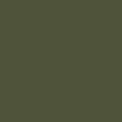 RAL6003 olivazöld