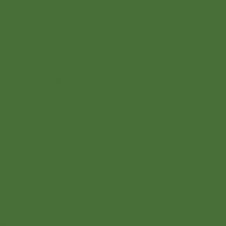 RAL6010 fűzöld