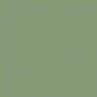 RAL6021 halvány zöld