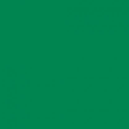 RAL6024 közlekedési zöld